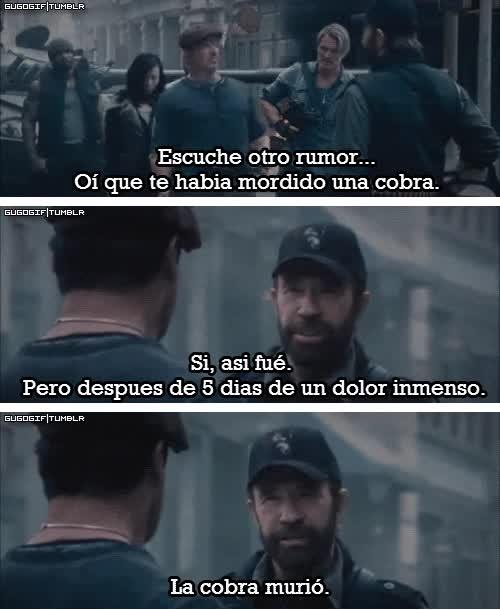Enlace a Rumores sobre Chuck Norris