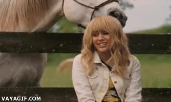 Enlace a Tal vez la culpa de todo la tenga este caballo