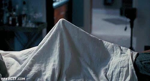 Enlace a Creo que hay algo extraño dentro de esta cama