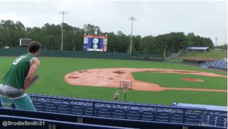 Enlace a Bate de baseball + Frisbee + Canasta = De lo imposible a lo increíble