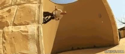 Enlace a Habilidad al límite sobre dos ruedas