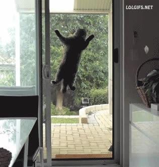 Enlace a Eh, ¿qué estáis haciendo ahí dentro?