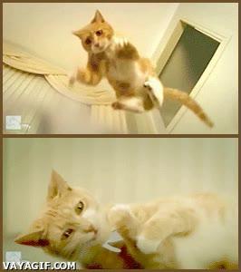 Enlace a El gato Ginger versus The paper army, segunda parte