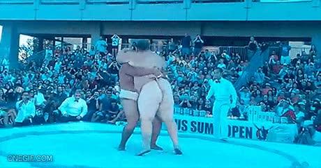 Enlace a Para los que creían que el sumo sólo consistía en empujones