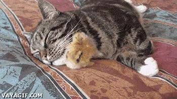 Enlace a ¡Cuidado con el gato durmiente! ¿Qué gato?