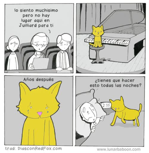 Enlace a Mi gato era pianista
