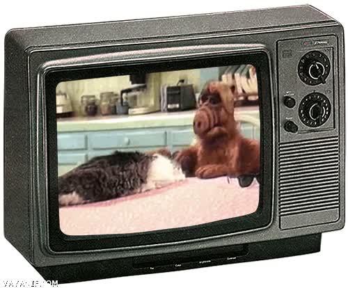 Enlace a Alf cuando nadie lo veía, ¡qué nostalgia!