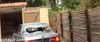 Enlace a ¿Usar el coche para arrancar un pequeño tronco? ¡Excelente idea!