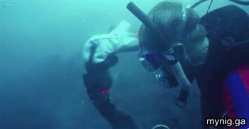 Enlace a Lava submarina