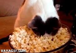 Enlace a Así soy yo comiendo palomitas recién sacadas del microondas