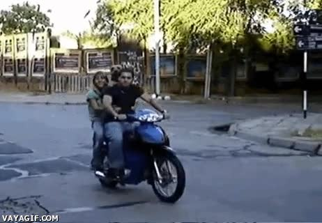 Enlace a Los perros también tienen derecho a ir sobre ruedas