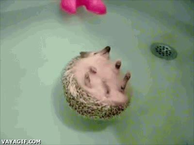 Enlace a Cuando me puedo dar un baño sin prisa