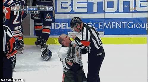 Enlace a Así de amables son los árbitros de hockey sobre hielo