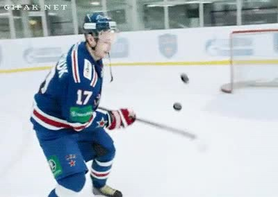 Enlace a El maestro del hockey sobre hielo