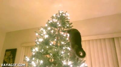 Enlace a Un mal día para la navidad...