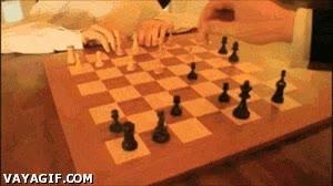 Enlace a Lo importante en el ajedrez es encontrar un rival a tu altura