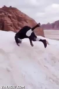 Enlace a Es por esto que no es mejor que no nieve en Arabia Saudí