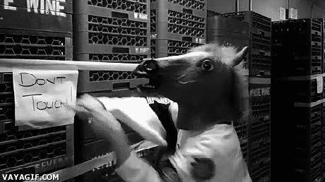 Enlace a Cuidado chicos, estamos ante un caballo malo
