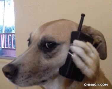 Enlace a Cuando recibo una llamada de una amiga junto a mi novia