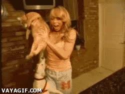 Enlace a Así que quieres mucho a tu maldito gato, ¿eh? ¡Tráelo aquí ahora mismo!
