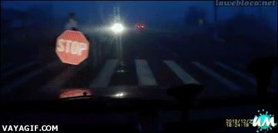 Enlace a Una solución sencilla para cruzar por la calle de noche de forma segura