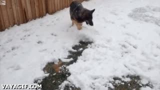 Enlace a ¡Venga humano, que te ayudo a hacer un muñeco de nieve!