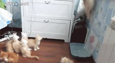 Enlace a ¡Oh no, mamá ha caído, huyamos mientras podamos!