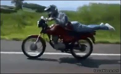 Enlace a Supongo que conducir la moto sentada no le parecía suficientemente emocionante