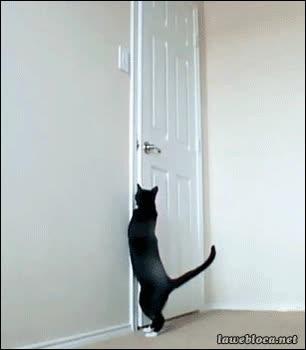 Enlace a ¿Quién llamará a la puerta?