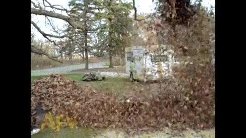Enlace a Los niños tienen derecho a divertirse con la montaña de hojas