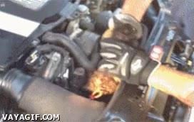 Enlace a ¿Qué le falla al motor, una bujía, el aceite? No, algo más escurridizo y adorable...
