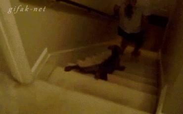Enlace a Cómo bajar correctamente la escalera