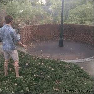 Enlace a ¿Quién necesita amigos para jugar al frisbee?