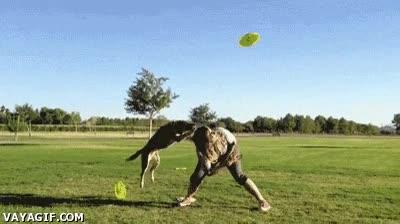 Enlace a El perro saltador