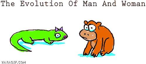 Enlace a Y la otra cara de la evolución de hombres y mujeres