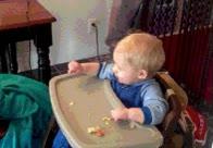 Enlace a ¡Mamá, el gato se ha comido mi galleta!