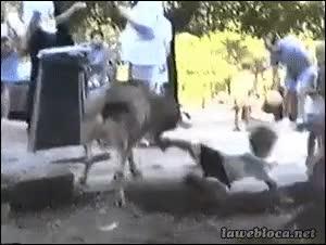Enlace a ¡Venga al suelo, que estoy muy loco!