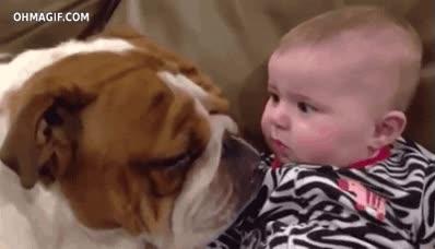 Enlace a Creo que el bebé no se esperaba eso
