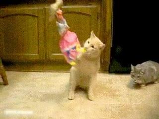 Enlace a Un espectácul de marionetas y gatos no parece ser una buena idea