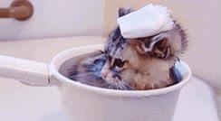 Enlace a Nada como un bañito relajante para empezar el fin de semana