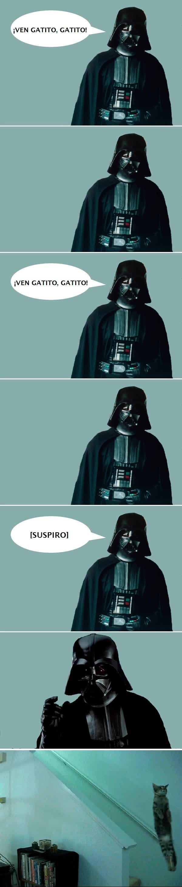 Enlace a Darth Vader no se anda con jueguecitos con su gato
