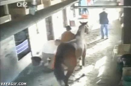 Enlace a Los caballos tienen un lado muy troll