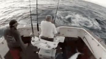 Enlace a ¡Oh Dios, un pez asesino, abandonad el barco!