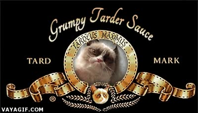 Enlace a Grumpy cat productions, presents...