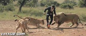 Enlace a Así es cómo aprendió Pepe a jugar a fútbol