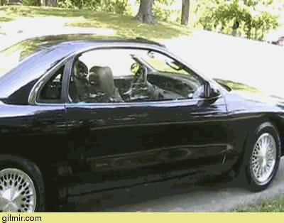 Enlace a Necesito una de estas puertas para mi coche