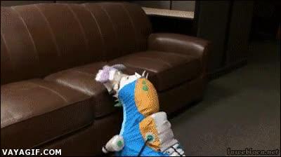Enlace a No estoy muy seguro de qué va disfrazado este perro, pero es un depredador implacable