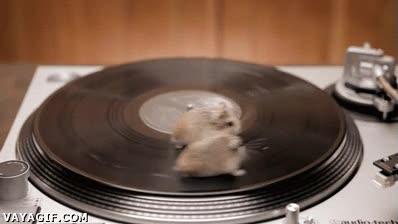 Enlace a Aún así, mejores DJ's que muchos que van de súper-estrellas por la vida