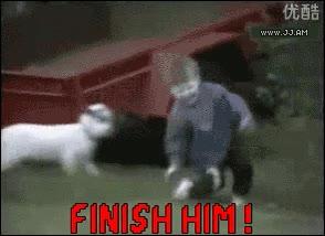 Enlace a No debimos dejar a la cabra jugar al Mortal Kombat
