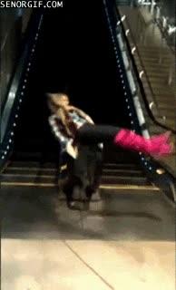 Enlace a Voy a hacer eso que he visto por Internet de las escaleras mecánicas, ¿qué podría salir mal?
